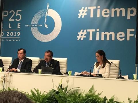 Yucatán, líder nacional en acciones de defensa del medio ambiente